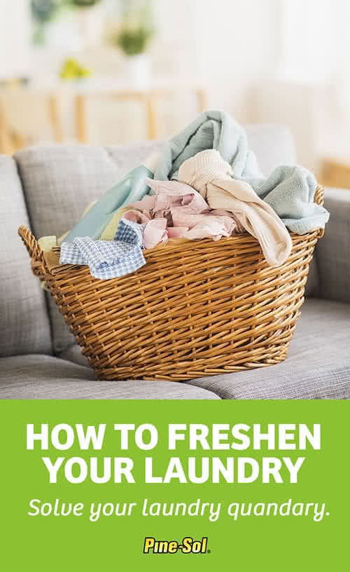 How To Do Laundry Pine Sol 174